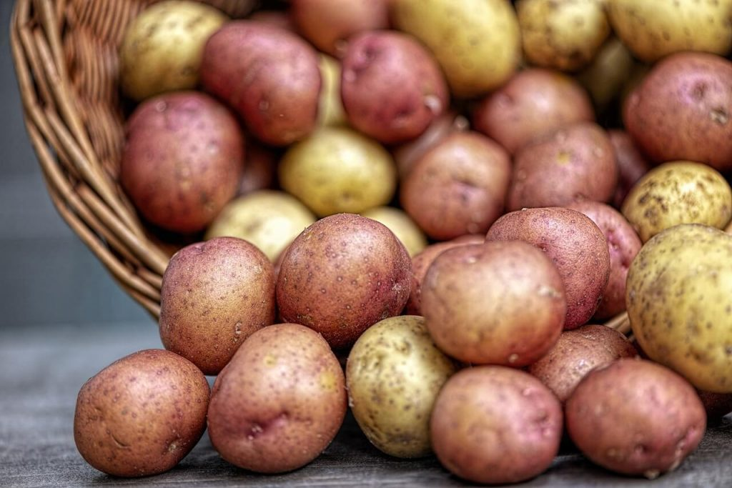 Mashed  Potatoe Nutriition